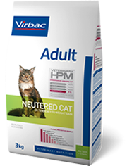 Adult - Neutered cat