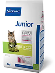 Junior - Neutered cat