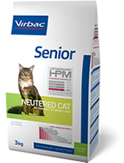 Senior - Neutered cat